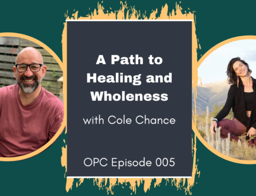 A Path to Healing and Wholeness
