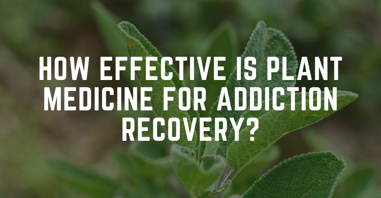 plant medicine for addiction recovery