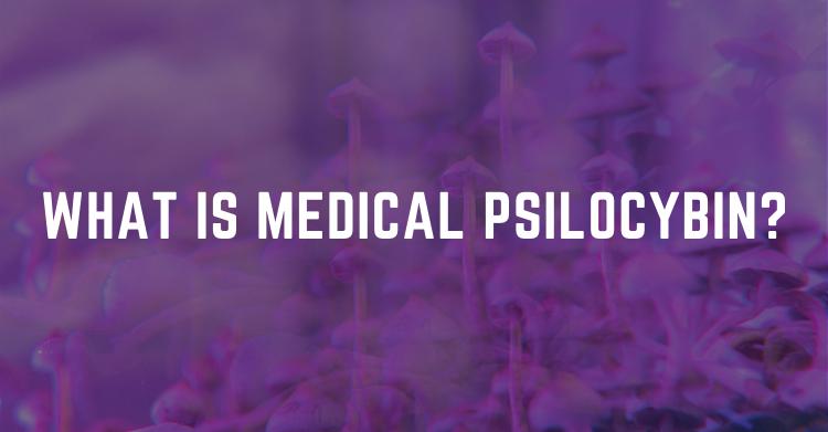 medical psilocybin